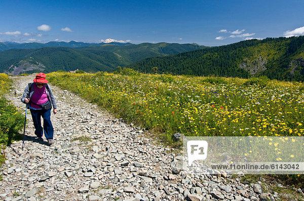 Female hiker on mountain path  Silver Star Peak  Cascade Range  Washington  USA