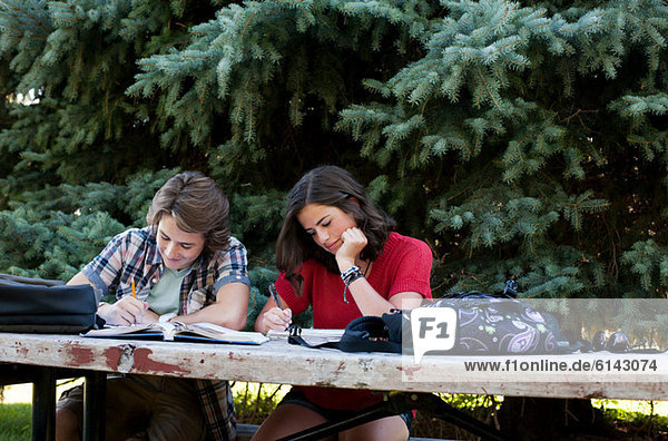 Teenage couple studying on picnic table in park