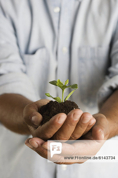Close up of hands holding mound of dirt and plant