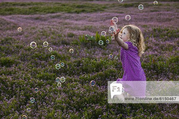 Europäer ,Blume ,Blase, Blasen ,nachlaufen ,Feld ,Mädchen
