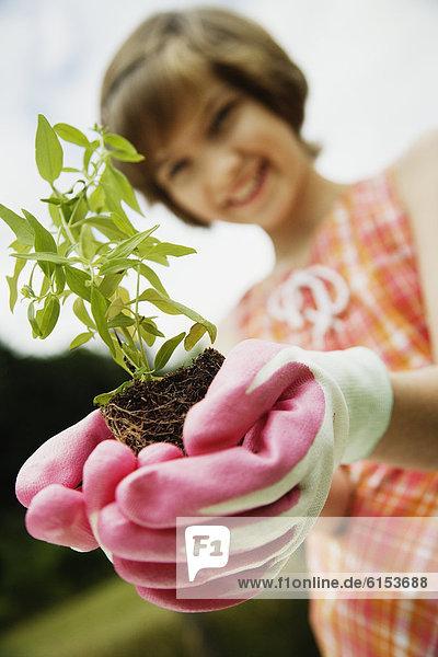 klein  halten  Pflanze  Mädchen
