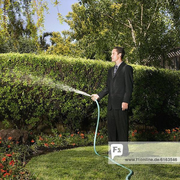 Wasser  Geschäftsmann  Hispanier  Pflanze