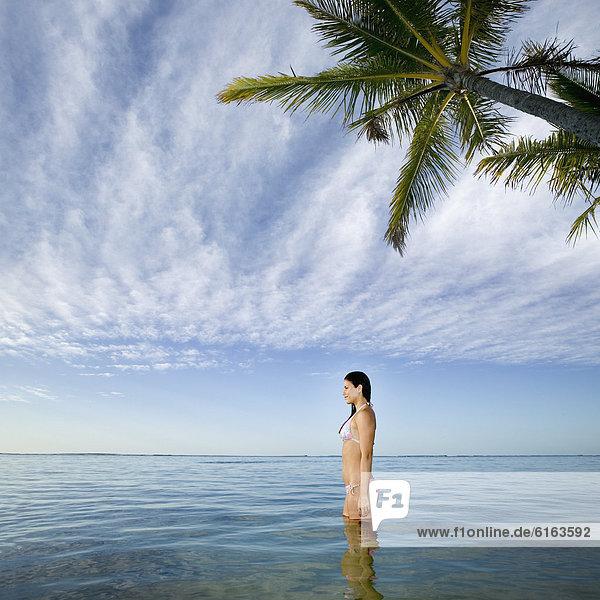 stehend  Frau  Ozean  Pazifischer Ozean  Pazifik  Stiller Ozean  Großer Ozean