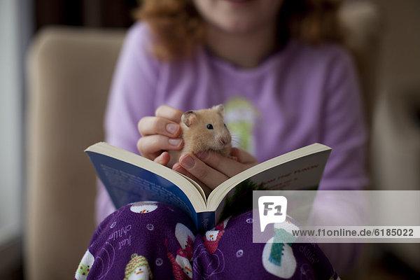 sitzend  Europäer  Buch  Mädchen  Taschenbuch  Hamster