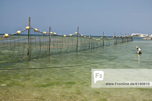 stehend  Meer  seicht  Fischer
