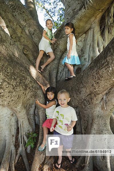 Children standing in large tree