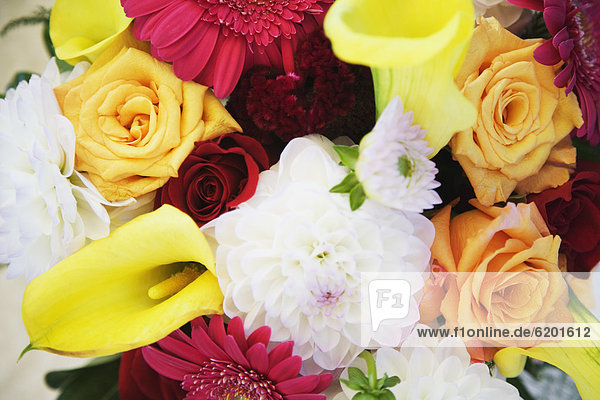 hoch  oben  nahe  Blumenstrauß  Strauß  Blume