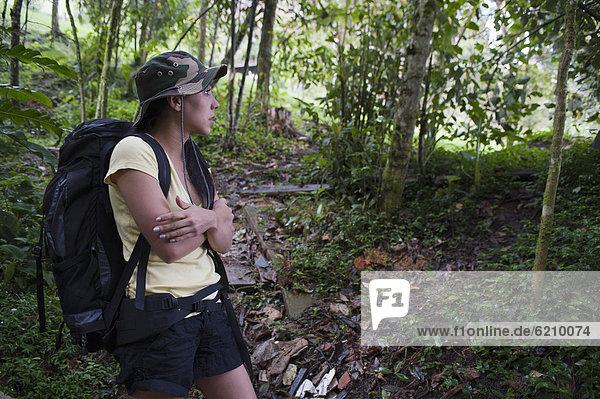 Frau  Hispanier  Wald  wandern