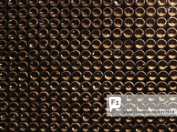 Verstaubte Weinflaschen älteren Jahrganges lagern in einem historischen Weinkeller  Hattenheim  Rheingau  Hessen  Deutschland  Europa Verstaubte Weinflaschen älteren Jahrganges lagern in einem historischen Weinkeller, Hattenheim, Rheingau, Hessen, Deutschland, Europa