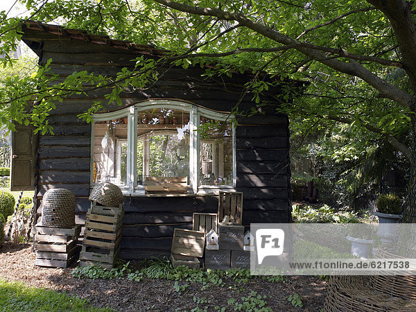 Romantic shed with old wooden boxes and decorative accessories made of wicker  North Rhine-Westphalia  Germany  Europe