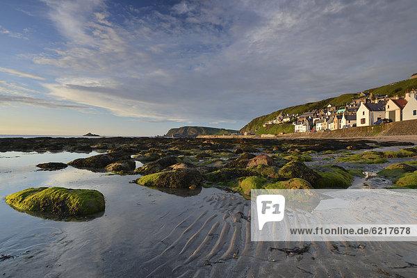 niedrig Felsbrocken Europa bedecken Großbritannien Gebäude Gezeiten Alge frontal Schottland