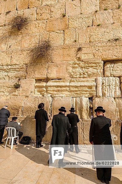 Orthodox Jewish men praying in the men´s section  Western Wall Wailing Wall  Old City  Jerusalem  Israel