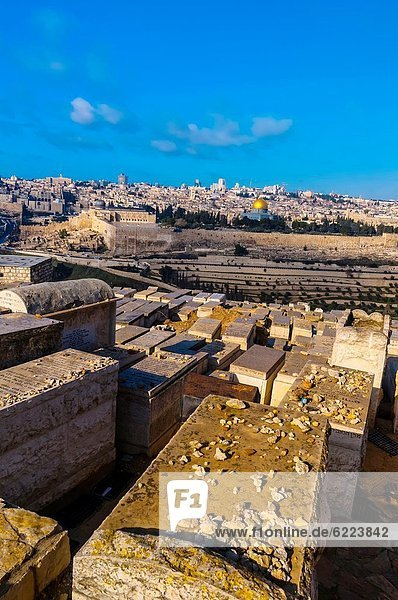Gravestones 150 000 graves  Jewish Cemetery on the Mount of Olives  with the Dome of the Rock on the Temple Mount in background  Jerusalem  Israel