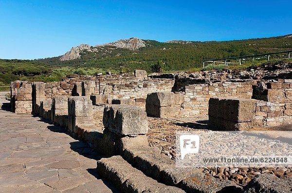 Roman ruins of Baelo Claudia and Sierra de la Plata  Tarifa  Cadiz-province  Spain