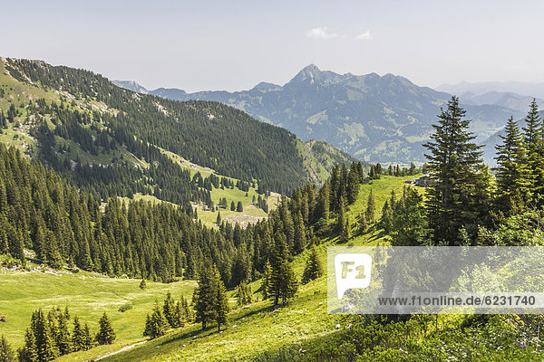 Taubenstein bei Spitzingsee  hinten der Wendelstein  1838 m  Alpen  Mangfallgebirge  Bayern  Deutschland  Europa