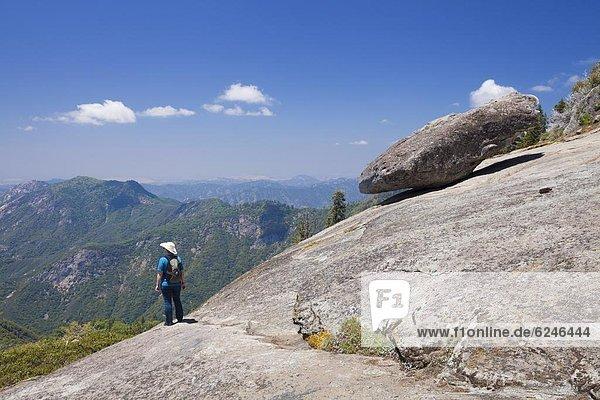 Vereinigte Staaten von Amerika  USA  Nordamerika  Sequoia Nationalpark  Kalifornien