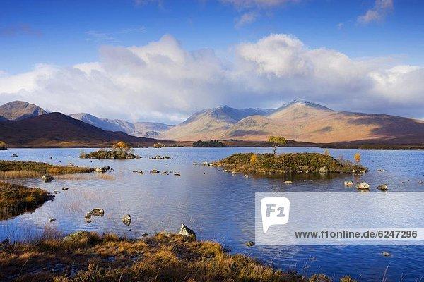 Europa  Großbritannien  Herbst  Highlands  Moor  Schottland