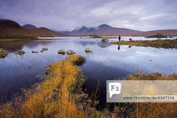 Farbaufnahme  Farbe  nebeneinander  neben  Seite an Seite  Europa  Großbritannien  fangen  Herbst  Fotograf  Highlands  Moor  Schottland