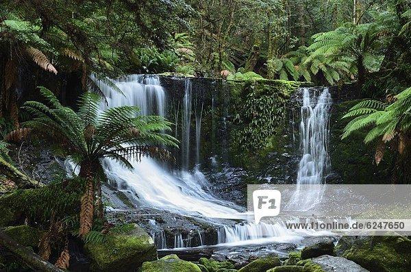 Pazifischer Ozean,  Pazifik,  Stiller Ozean,  Großer Ozean , UNESCO-Welterbe , Horseshoe Falls , Australien , Tasmanien