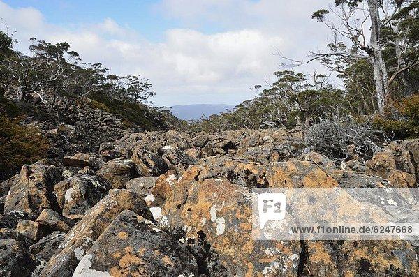 Pazifischer Ozean  Pazifik  Stiller Ozean  Großer Ozean  Moräne  UNESCO-Welterbe  Australien  Tasmanien