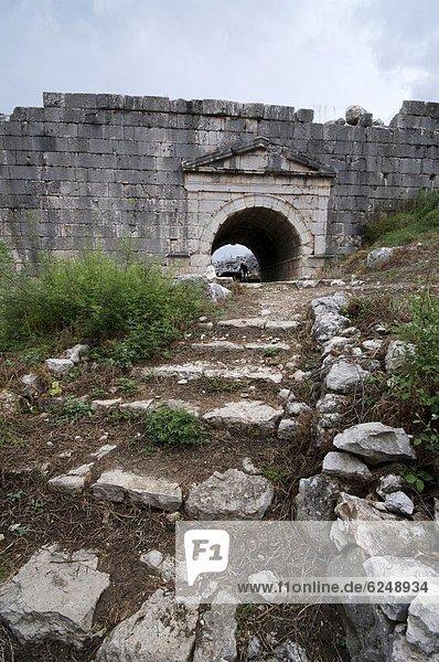 Truthuhn  UNESCO-Welterbe  Anatolien  Eurasien  Türkei