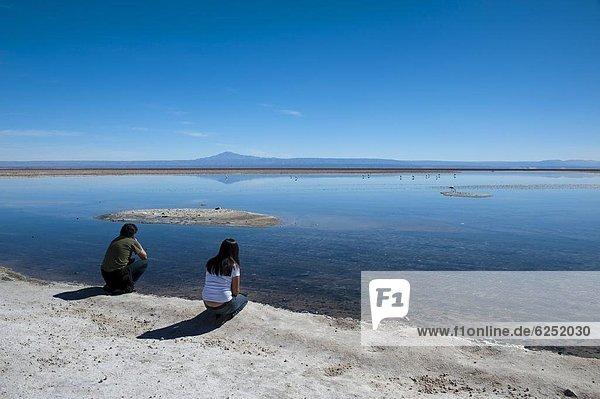 Atacama  Chile  Südamerika