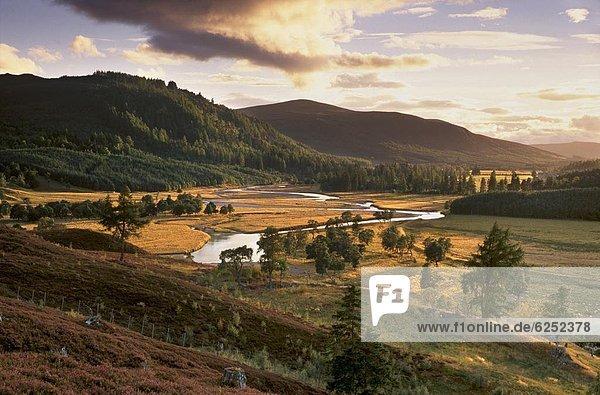 Obere Dee-Tal in der Nähe von Inverey  Deeside  Aberdeenshire  Schottland  Vereinigtes Königreich  Europa