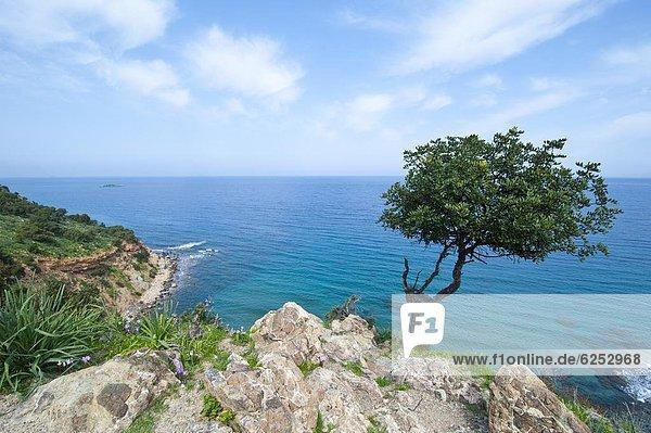 The turquoise waters on the Akamas peninsula  Cyprus  Mediterranean  Europe