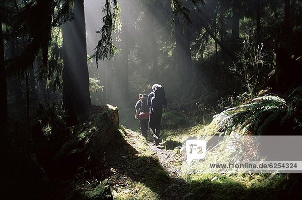 Nordamerika  UNESCO-Welterbe  Olympic Nationalpark  Washington State