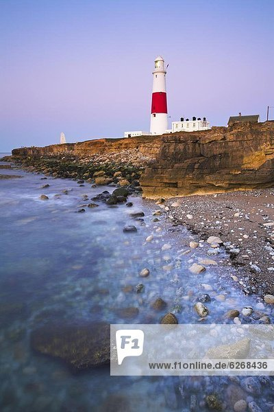 Schnabel  Europa  Großbritannien  Leuchtturm  UNESCO-Welterbe  Rechnung  Dorset  England