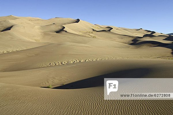 Sand dunes at dawn  Great Sand Dunes National Park  Colorado  United States of America  North America