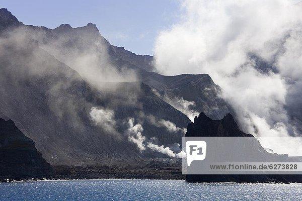 Aktion  weiß  Vulkan  Insel  Pazifischer Ozean  Pazifik  Stiller Ozean  Großer Ozean  Überfluss  neuseeländische Nordinsel  Bucht  Neuseeland