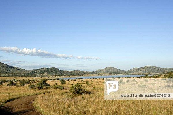 Südliches Afrika  Südafrika  Afrika