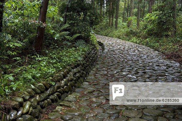 Stein  strecken  Fernverkehrsstraße  Tokyo  Hauptstadt  Pflasterstein  Pflaster  sprechen  Japan  Kyoto  alt  Shizuoka