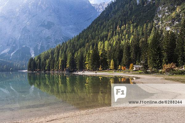 Pragser Wildsee  Lago di Braies  Pragser Tal  Prags  Dolomiten  Südtirol  Alto Adige  Italien  Europa