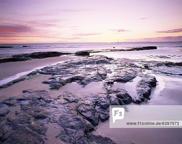 Europa  Strand  Großbritannien  über  Sonnenaufgang  England  Nordsee  Northumberland