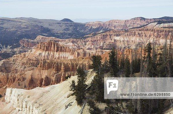 Zeder Breaks National Monument  Utah  Vereinigte Staaten von Amerika  Nordamerika