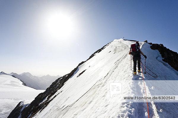 Wanderer beim Aufstieg zum Similaun auf dem Niederjochferner im Schnalstal oberhalb des Fernagt Stausees  hier auf dem Gipfelgrat  hinten der Similaun  Südtirol  Italien  Europa Wanderer beim Aufstieg zum Similaun auf dem Niederjochferner im Schnalstal oberhalb des Fernagt Stausees, hier auf dem Gipfelgrat, hinten der Similaun, Südtirol, Italien, Europa