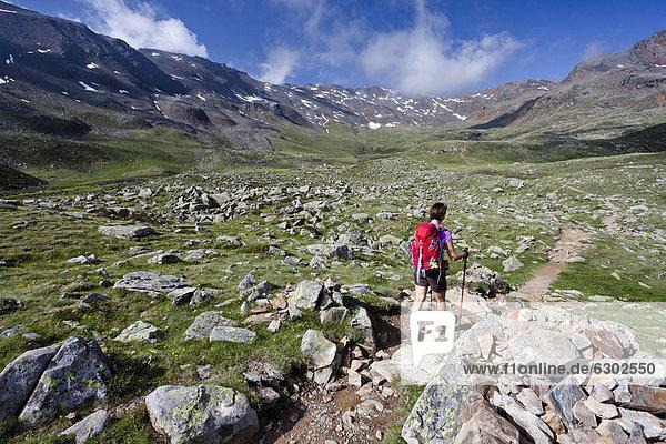 Wanderer beim Aufstieg zur Gleckspitz im hintersten Ultental  hinten der Gipfel der Gleckspitz  Südtirol  Italien  Europa Wanderer beim Aufstieg zur Gleckspitz im hintersten Ultental, hinten der Gipfel der Gleckspitz, Südtirol, Italien, Europa
