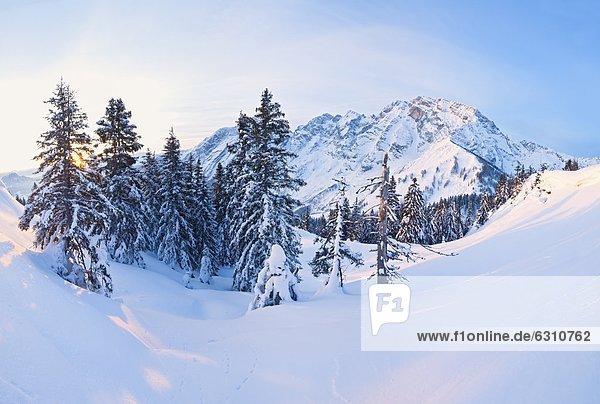 Sonnenaufgang am Hohen Göll  Berchtesgadener Alpen  Bayern  Deutschland  Europa