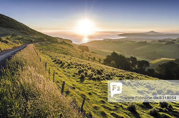 Sonnenuntergang über Weideland neben einer Landstraße  hinten Dunedin Beach  Halbinsel Otago Peninsula  Südinsel  Neuseeland  Ozeanien