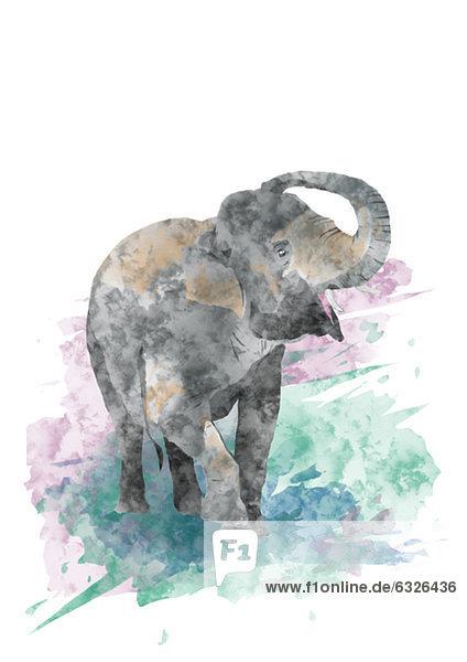 niedlich  süß  lieb  Illustration  Elefant  Baby niedlich, süß, lieb ,Illustration ,Elefant ,Baby