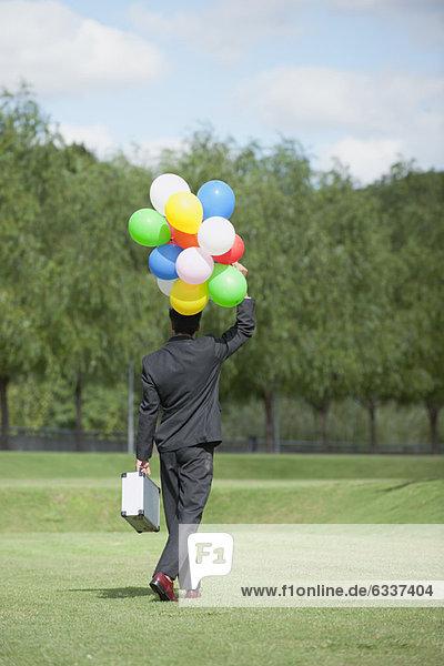 Rückansicht  Geschäftsmann  gehen  Luftballon  Ballon  Bündel  halten  Wiese Rückansicht ,Geschäftsmann ,gehen ,Luftballon, Ballon ,Bündel ,halten ,Wiese