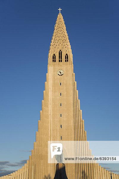 Monument to Leif Eriksson  HallgrÌmskirkja church  Reykjavik  Iceland  Europe  PublicGround