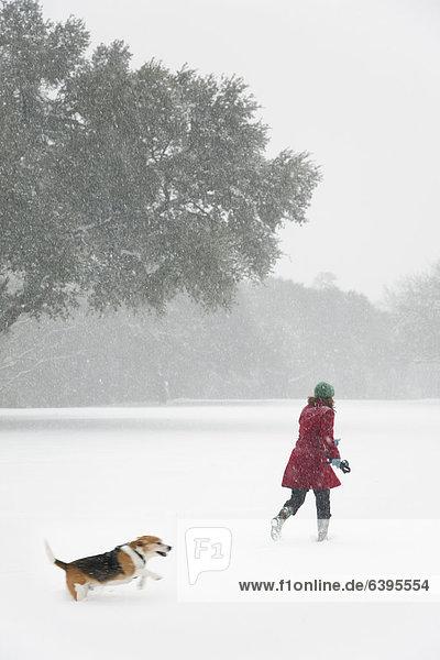 Europäer  Frau  gehen  Sturm  Hund  Schnee