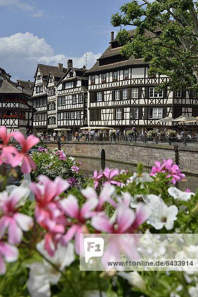 Frankreich Europa Gebäude Krankheit Fluss Elsass Hälfte Petite France Straßburg