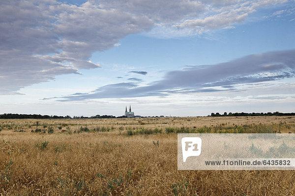 Blick auf die Kathedrale Chartres  von Osten  morgens  Chartres  Region Ile de France  Frankreich  Europa