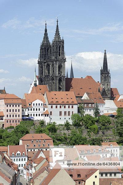 Blick auf Meißner Dom vom Turm der Frauenkirche  Meißen  Sachsen  Deutschland  Europa