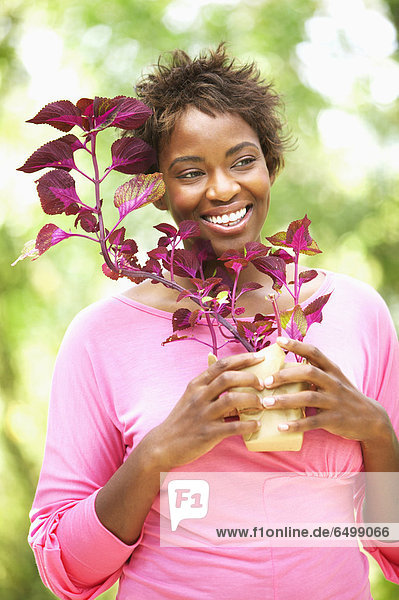 Frau  lächeln  halten  Pflanze