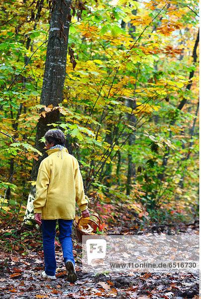 Woman forest walk © Lucenet Patrice/Oredia